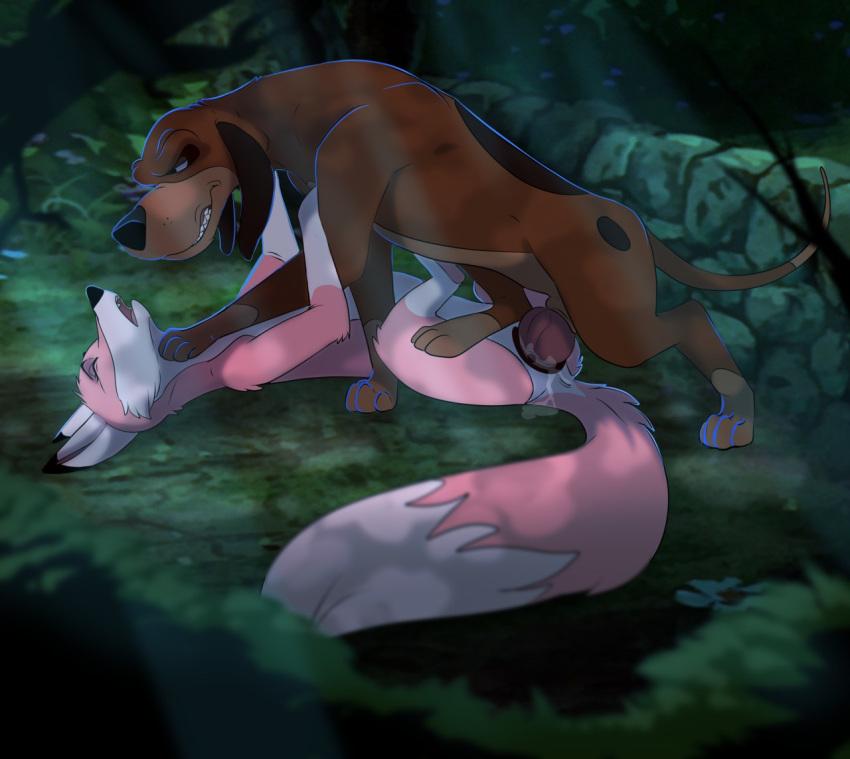 gingitsune: fox of messenger the gods Zack and wiki captain rose