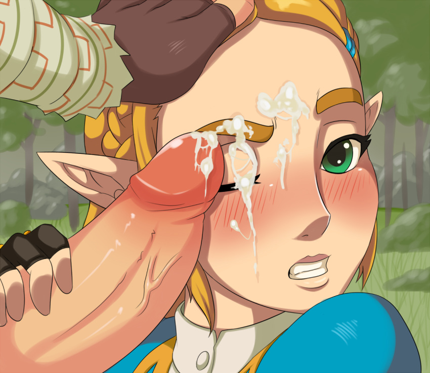 wild of the breath zora Breath of the wild link naked